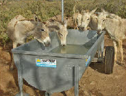 Poortman Gorredijk stuurt drinkbakken naar ezels Bonaire