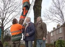 Vleermuiskasten geplaatst in centrum Gorredijk
