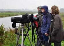 Trekvogels tellen met Natuurvereniging Gorredijk