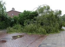 Zomerstorm velt boom aan Schansburg Gorredijk