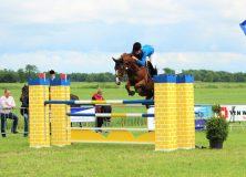 Drie dagen paardensport in Gorredijk